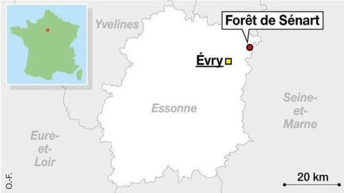 Essonne. Le violeur en série de la forêt de Sénart condamné à 20 ans de réclusion en appel