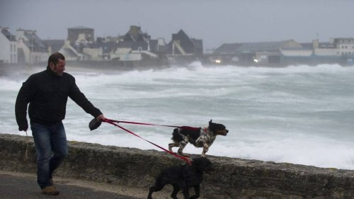Tempête Aurore. Météo France étend l'alerte orange aux vents violents à neuf départements