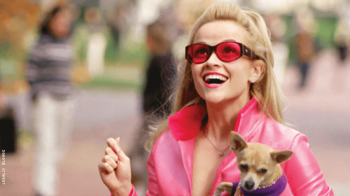 An All LGBTQ+ Version of 'Legally Blonde' Is Coming to NewFest