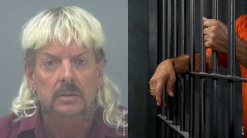 Appeals Court Overturns Joe Exotic's Sentence in Murder-for-Hire Plot