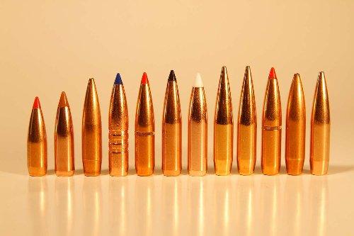 Is Handloading Rifle Ammunition Really Worth It?