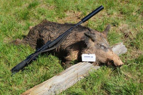 AirForce Texan: Big Bore Air Rifle Review