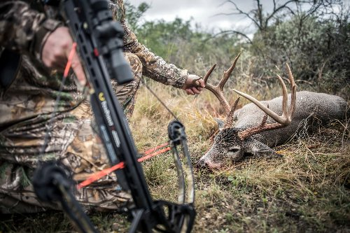 Bowhunters and Crossbow Hunters Are Killing More Deer. Is That a Bad Thing?