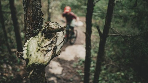 Trail Etiquette Tips from an Old Burnout