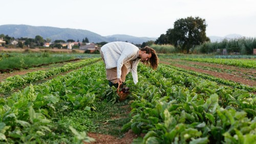 Why You Need to Know About Regenerative Agriculture
