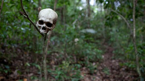A Terrifying Journey Through the World's Most Dangerous Jungle