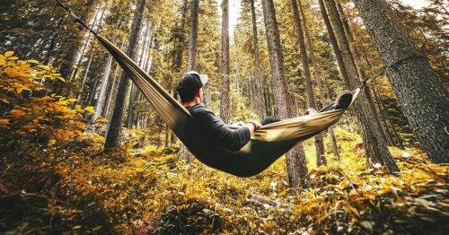 The Joy Of Idle Living