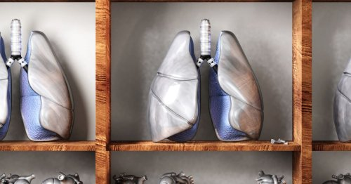 The Future of Transplants: Custom-Fit Lungs?