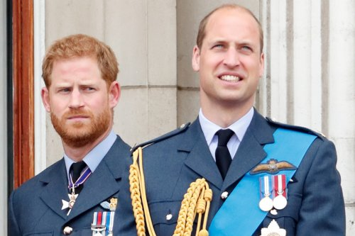Princes Harry and William have been 'arguing for the past 18 months': friend