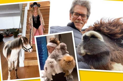 Best star snaps of the week: The furry and the famous