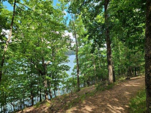 Georgia Hikes: Homestead Trail