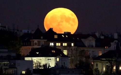 Super Lune des Fraises 2021 : à quelle heure et comment l'observer le 24 juin ?