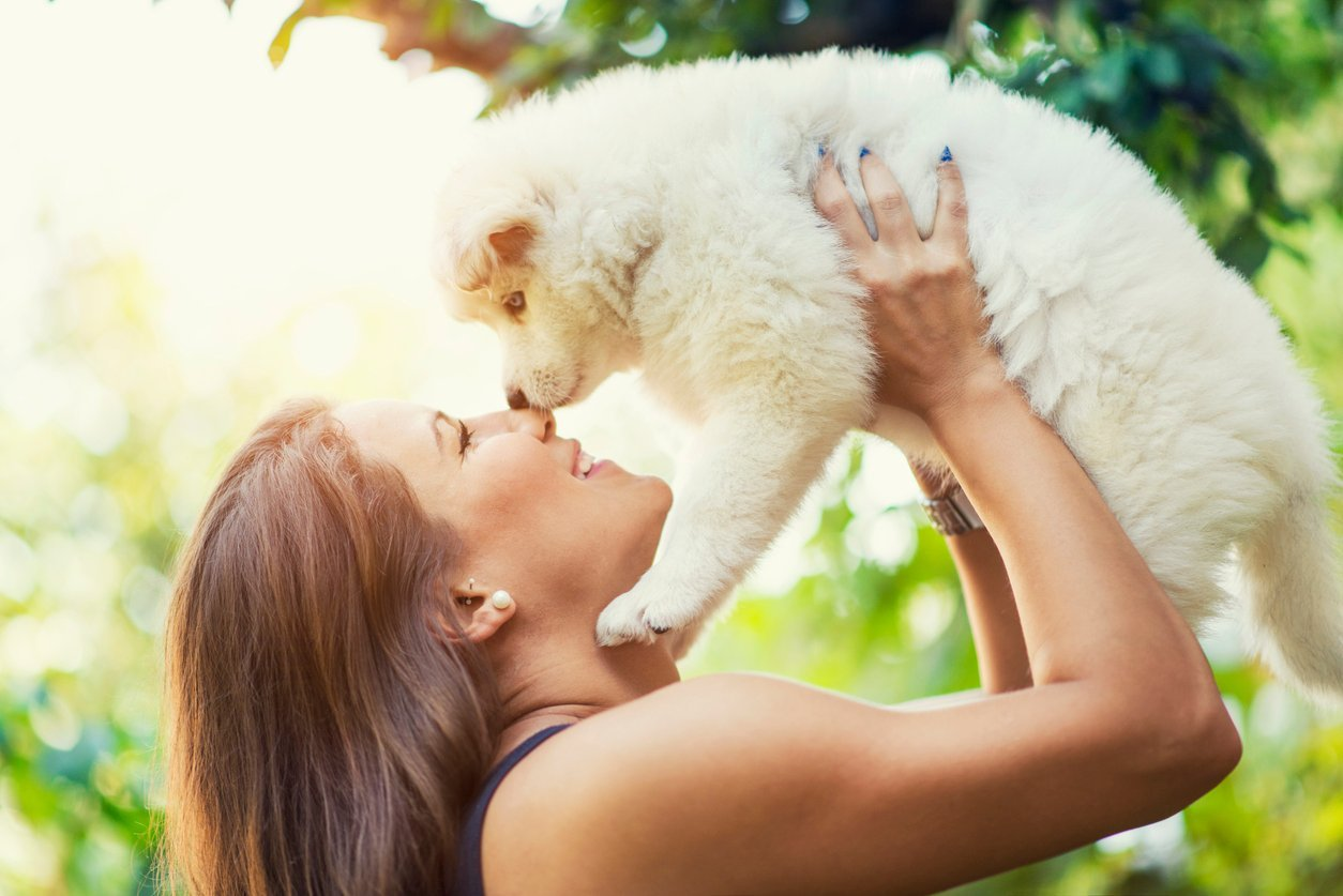 15 Most Affectionate Dog Breeds to Give You Emotional Support (and Puppy Cuddles)