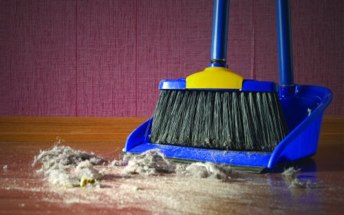 Where Does All of Our House Dust Come From?