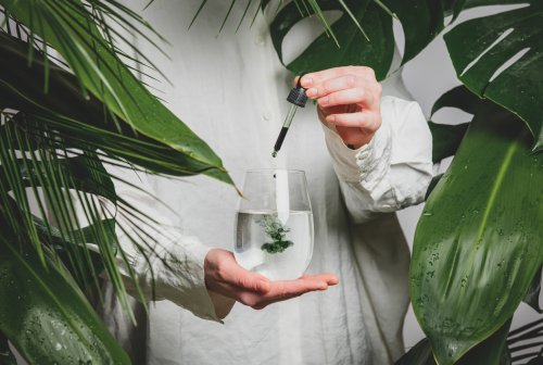 TikTokkers are Drinking Chlorophyll Water—but Are There Any Real Health Benefits? A Cleveland Clinic Doc Weighs In