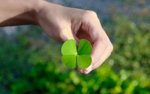 We Have the 140 Best Irish Blessings and Favorite Irish Sayings for St. Patrick's Day