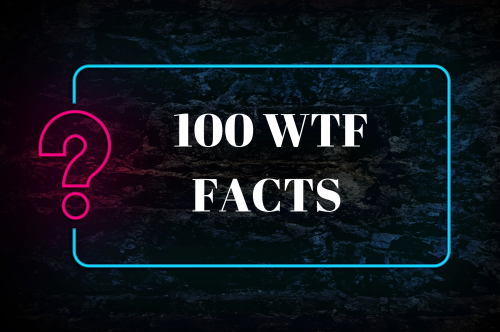 100 Wild and Wacky WTF Facts That Are So Shocking They'll Have You Saying 'Whoa?!'