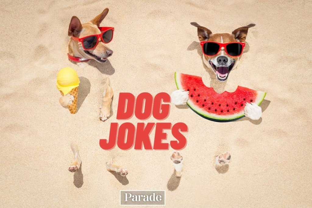 Games, Puzzles, Jokes & Puns - cover