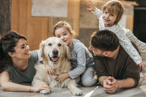 Pawsome—These 25 Best Family Dog Breeds Are Great Around Kids