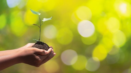 30 Inspiring Quotes for Earth Day: 'The Environment Is Where We All Meet'