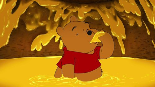 Agli orsi piace davvero il miele?