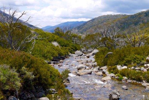 Kosciuszko National Park & Snowy Mountains - Wandern, Relaxen, Skifahren & der höchste Berg Australiens! - Passenger On Earth