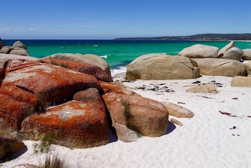 Bay of Fires - Grandioses Farbenparadies & schönste Küste Tasmaniens! - Passenger On Earth