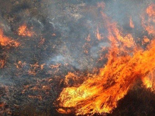 SCU Lightning Complex Fire: Latest Acreage, Updates, Evacuations