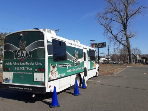 TEAM Mobile Cat Veterinary Unit Still Making The Rounds In CT