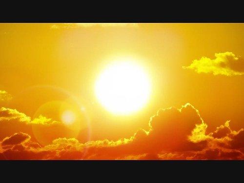 Coachella Valley Heat Wave Kills Pug
