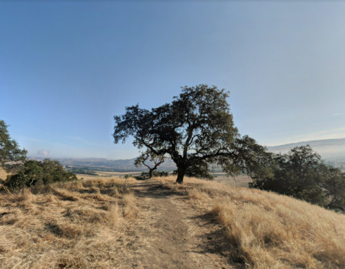 Family Sells Ranch For $18M In Deal That Halts South Bay Sprawl
