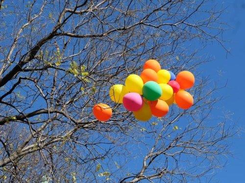 Springtime In CT Brings Renewed Warnings About Balloon Dangers