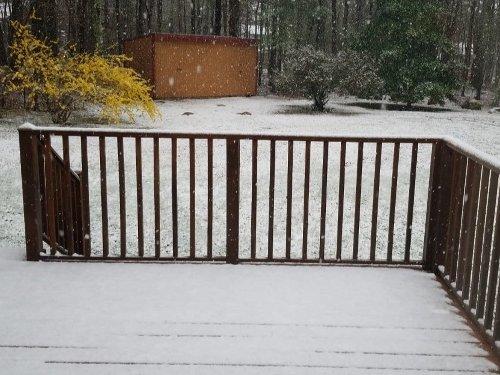 Spring Surprise: Late-Season Snow Falls In Rhode Island