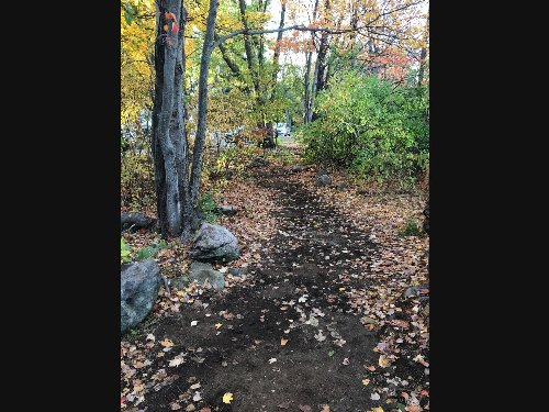 Eagle Scout rebuilds trail next to Hardy Pond