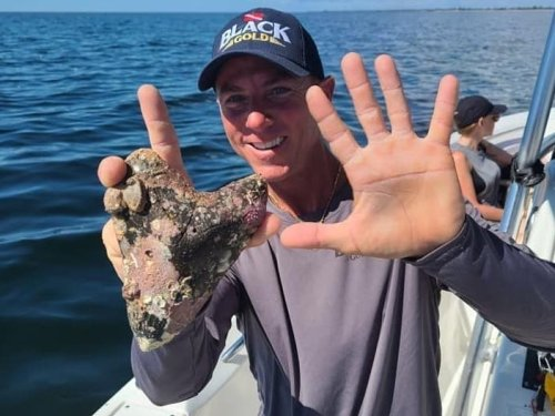 Venice Boat Captain Finds Rare 6-Inch Megalodon Tooth, A 'Fossil Hunter's Dream'