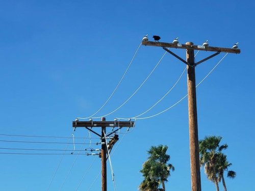 1233 Lose Power In Agoura Hills