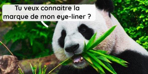 6 faits sur les grosses peluches noires et blanches qu'on appelle Panda