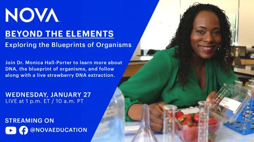 Take a Chemistry Field Trip with NOVA Education