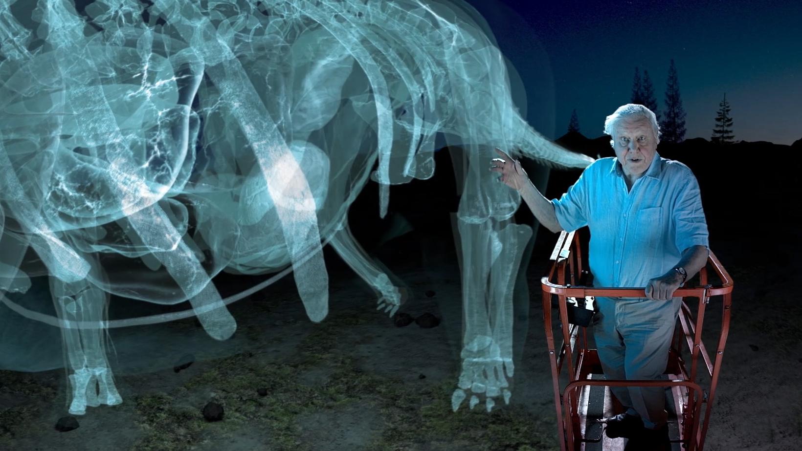 360-degree Virtual Tour of a Dinosaur Giant