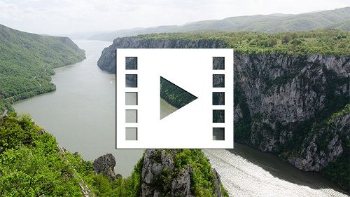 This algorithm creates realistic video from a single photo - DIY Photography