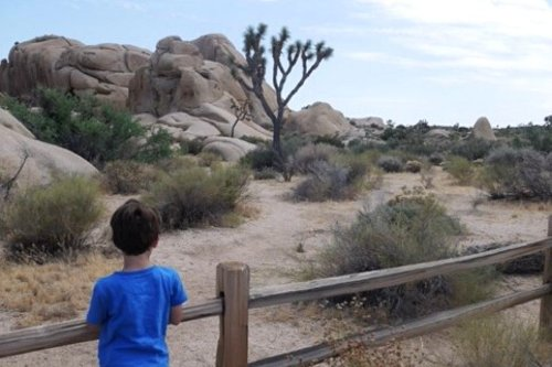 Fantastic West Coast National Parks for kids perfect for your next family vacation