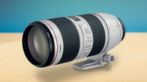How to Pick the Best Canon Lens for Your Camera