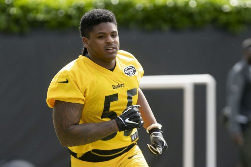 Cat-loving Steelers' fans have claws out for 'cruel' Devin Bush
