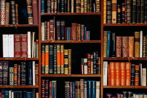 English man finds hidden passageways, secret rooms behind bookshelf in family home: watch