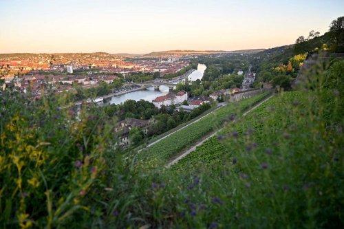 Würzburg: Sehenswürdigkeiten und Tipps