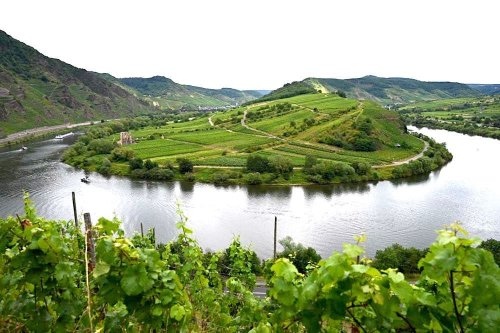 Moselschleife: Bremm, Calmont und Aussichtspunkt