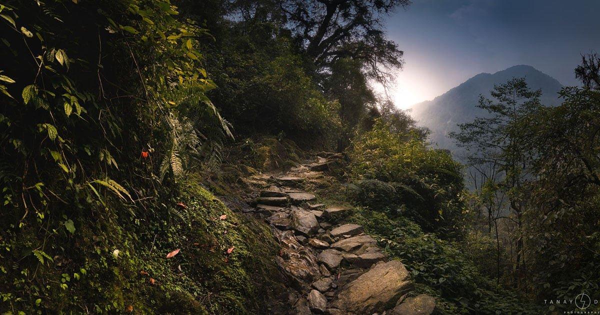 Goecha La: The Himalayan Trek in India to the Third Highest Peak