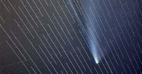 SpaceX Satellites Ruin Photographer's Shots of Comet NEOWISE