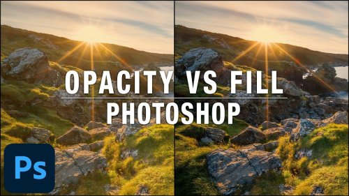 What is the Difference Between Opacity and Fill in Photoshop?