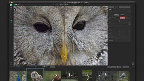 ON1 announces image noise removal program, NoNoise AI | Photofocus